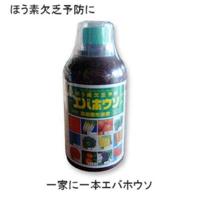 画像1: エバホウソAエキス「ほう素欠乏予防・即効性葉面散布液肥」【500ml】