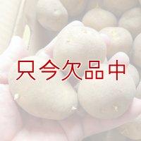 [2017年は完売終了](馬鈴薯)種ジャガイモ【トウヤ】【1kg】大粒で早生、育てやすい品種