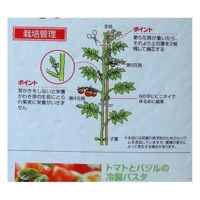 画像3: トマトの土《甘くて、美味しいトマトづくり》家庭園芸用培養土【14L】