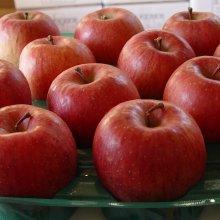 詳細写真1: [軽]一般農業園芸用《高酸度-リンゴ酢(酸度10%)》【20L】【食用可】【食品加工用】