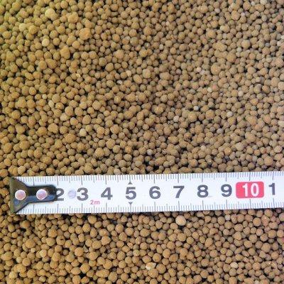 画像2: インドネシア産バットグアノ【粒(つぶ)状】【10kg(5kgx2)】