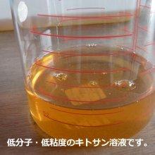 詳細写真2: バラとバラ科植物専用《低分子・低粘度「2%」キトサン溶液》【即効性】【1L容器】