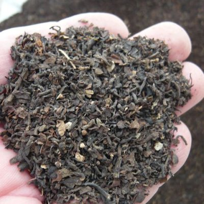 東南アジア産「海藻粉末」【20kg】海藻ミール