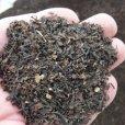飼料にもなる海藻粉末