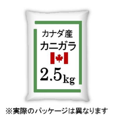 画像2: カナダ産・蟹殻(カニガラ)【2.5kg】「植物保護・肥効・土壌改良に最適」