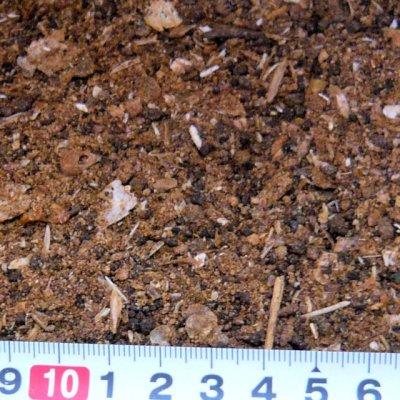 画像2: 魚粉【2kg】【動物性チッソ補給・アミノ酸肥料・魚かす】