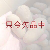 [完売](馬鈴薯)種ジャガイモ【メークイン】【1kg】煮崩れしにくいのでカレー・シチューに最適