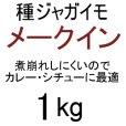(馬鈴薯)種ジャガイモ【メークイン】