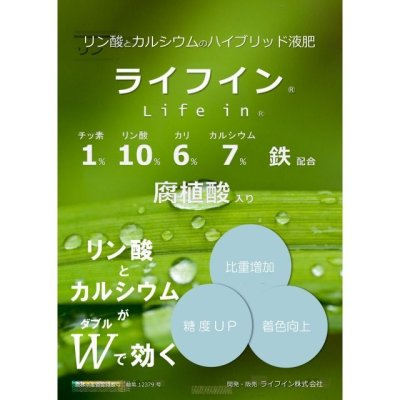 画像2: 【腐植酸入り液肥】機能性ハイブリッド液肥『ライフイン』(1-10-6-cao7)【20kg】【日祭日の配送および時間指定不可】