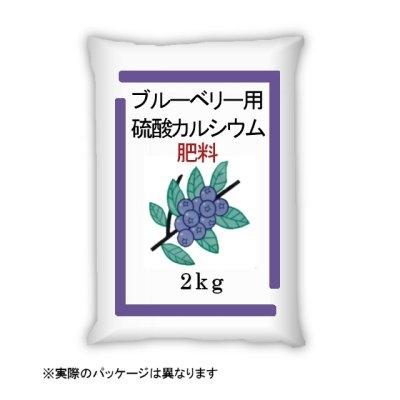 画像1: ブルーベリー用・硫酸カルシウム「ブルーベリーの友人」【2kg】【pHを上げずにカルシウムを補給】