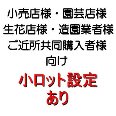 画像4: 【超軽量】防鳥カルネット(原反)【2x100m】約12mm角目【送料無料】【日祭日の配送・時間指定不可】
