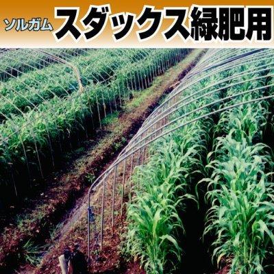 スタックス緑肥用