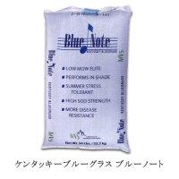 【西洋芝種子】ケンタッキーブルーグラス|ブルーノート【寒地型】