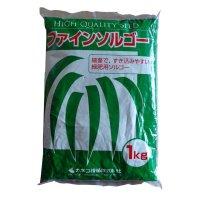 緑肥用ファインソルゴー【緑肥種子】ソルガム|イネ科|硬盤破砕【1kg】カネコ種苗製