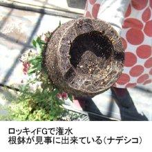 詳細写真1: ロッキィFG|根に酸素を届ける空気潅水シャワーヘッド【送料無料】