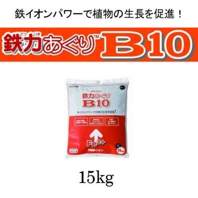 画像1: 鉄力あぐりB10【15kg】2価鉄補給資材【送料無料】【日祭日の配送・時間指定不可】