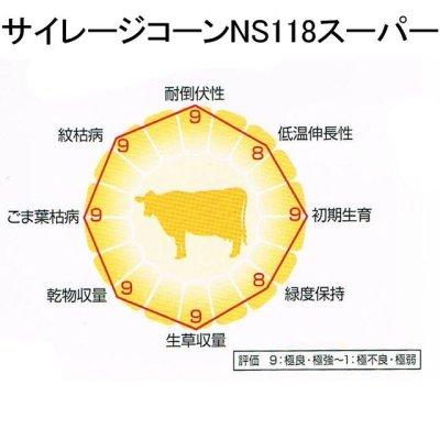 サイレージコーン 飼料用トウモロコシ(中早生種) NS118スーパー