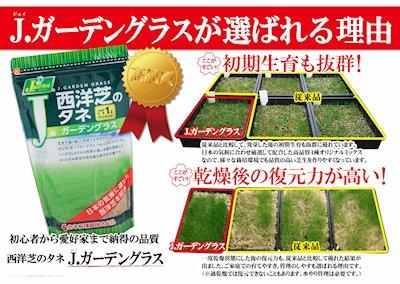 画像4: 西洋芝のタネ J.ガーデングラス(芝生の種)【1L/約20平方メートル分】