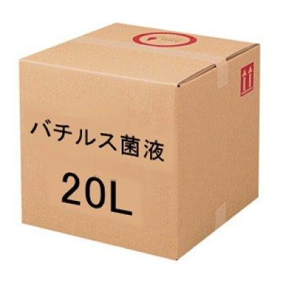 バチルス菌液20L