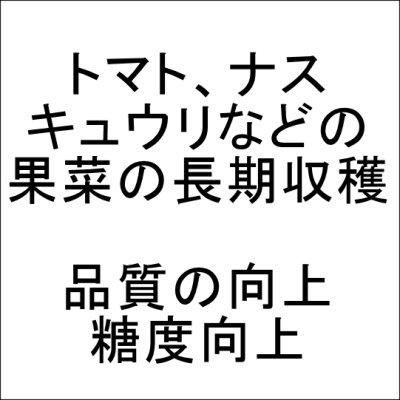 りん酸+カルシウム液肥(N1-P10-K6-cao7)【1L】