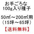 画像5: チモシーのタネ 生牧草・ペット・実験栽培用【100g】【送料無料】【時間指定不可】 (5)
