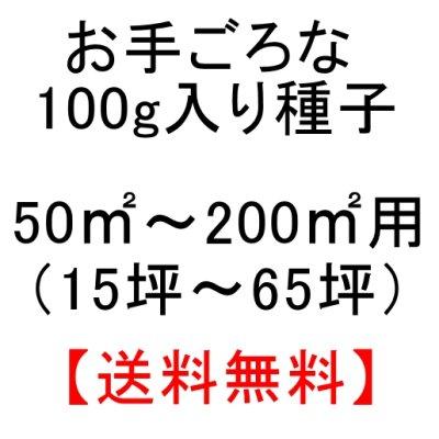 画像5: チモシーのタネ 生牧草・ペット・実験栽培用【100g】【送料無料】【時間指定不可】