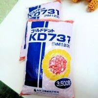 【牧草種子】ゴールドデント|KD731 [RM123]|3500粒/約500平方m分|大型草姿で安定多収品種|カネコ種苗製