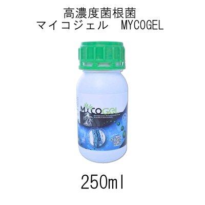 マイコジェル(MYCOGEL)高濃度菌根菌(ゲル状)