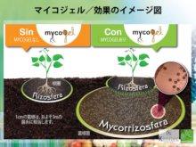 詳細写真1: マイコジェル(MYCOGEL)【250ml】高濃度菌根菌(ゲル状)【送料無料】