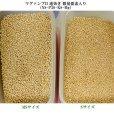 マグァンプII 速効き 微量要素入り(N8-P20-K8-Mg)【20kg】
