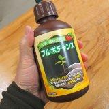 フルボチャンス [土壌・植物活性液]【500ml】【有機JAS適合資材】