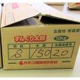 ナガイモ-ずんぐり太郎-カネコ種苗選抜-種長芋