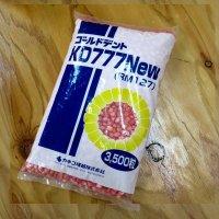 【牧草種子】ゴールドデント|KD777new [RM127]|3500粒/約500平方m分|生草乾物多収・耐倒伏性ある品種|カネコ種苗製