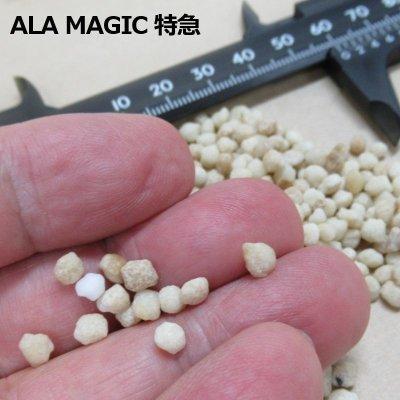 ALA MAGIC 特急|アラマジックエキスプレス(14-5-9)【5kg】