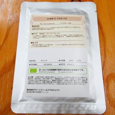 【有機種子】半結球/白菜 【大袋20ml/粒数目安:5222粒】Chinese Cabbage : Semi-Heading