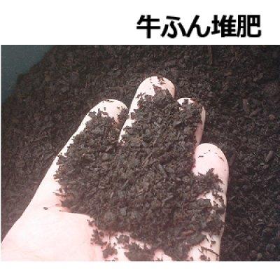 発酵牛ふん堆肥-ちから堆肥