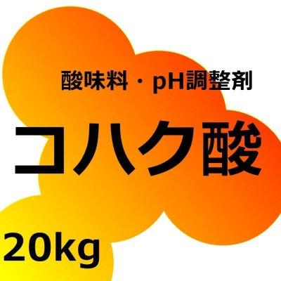 コハク酸【20kg】Succinic Acid