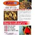 肥大力K 肥大促進カリウム葉面散布肥料【20kg】