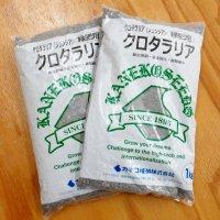 【緑肥用種子】クロタラリア ジュンシア|窒素固定|線虫抑制|硬盤破砕|マメ科【1kg】カネコ種苗製