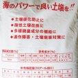 天然かき殻粉末石灰「かきパワー」【20kg】宮城県産アルカリ50%