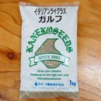 【牧草種子】イタリアンライグラス|ガルフ【中生種】【1kg】カネコ種苗製