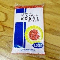 【新品種・牧草種子】ゴールドデント|KD641[RM114] 3500粒/約500平方m分|茎葉・子実のバランスがよい品種|カネコ種苗製