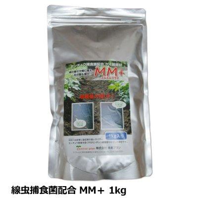 センチュウ捕食菌配合ケイ酸資材|MM+ |エムエムプラス