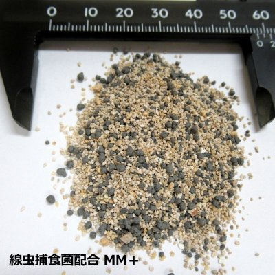 センチュウ捕食菌配合ケイ酸資材|MM+ エムエムプラス