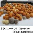 ネクスコート プロ(16-6-10)野菜苗・果樹苗用6ヵ月