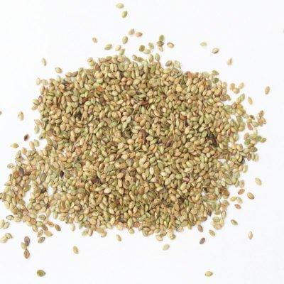 画像3: 【牧草種子】バヒアグラス【100g/25平方m分】暖地型牧草|緑肥 【送料無料】【時間指定不可】