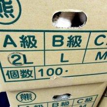 詳細写真3: 《くまちゃんブランド》種ニンニク「福地ホワイト6片」【2Lサイズ・1kg入り】【食用可】
