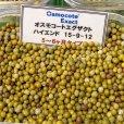 【肥効5-6ヶ月】オスモコートエグザクト(N15-P9-K12)ハイエンド【25kg】2段階溶出型コーティング肥料