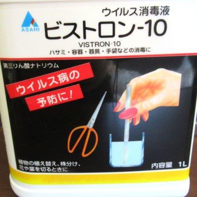 ビストロン-10【1L】
