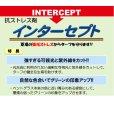 インターセプト|抗強光ストレス剤【500ml】芝生用